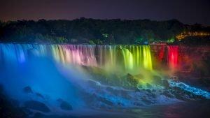 Creative Spades - Sergio David Spadavecchia - Niagara Falls