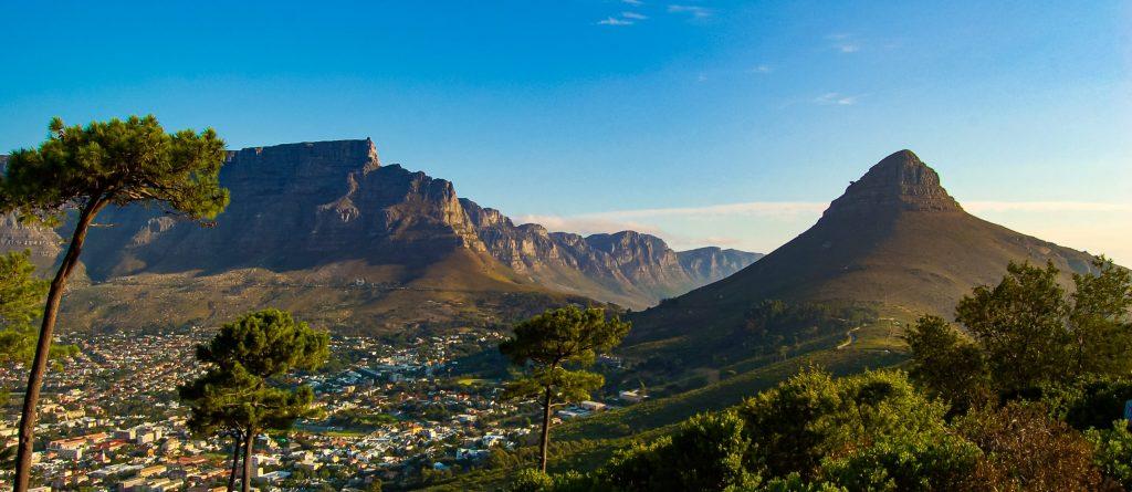 Creative Spades Sergio David Spadaveecchia Cape Town South Africa